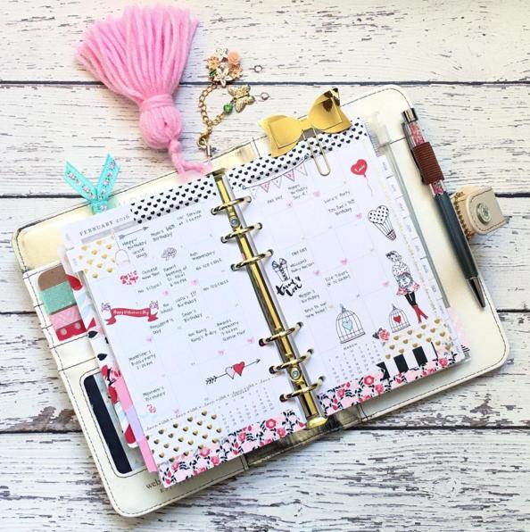 Pink planner tassle